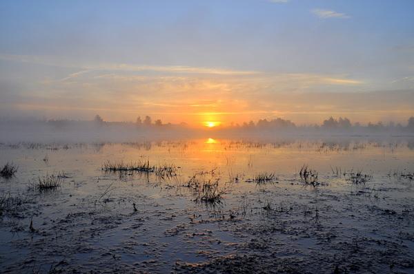 zon en mistbanken op vrijdagochtend in zuidoost Brabant  #buienradar