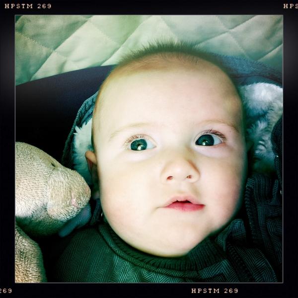 Fletcher of the day: bright eyes