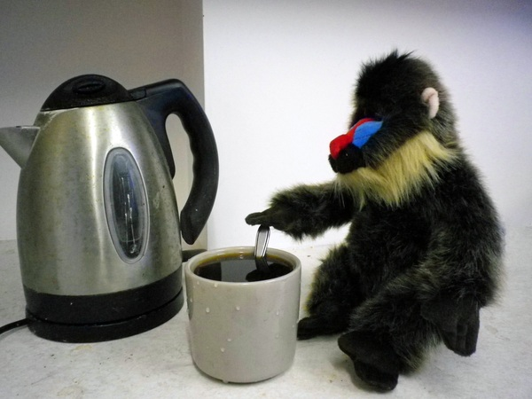 Mom likes her coffee dark as baboon fur