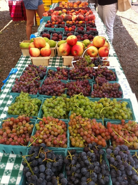 Green City Market: Mick Klug has a glorious variety of fruit today (including 7 kinds of plums)!