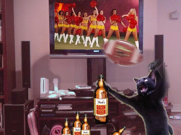 #NFLAnipals Purrrrrpurrrrrpurrrrr I do lubs #football and @hanksbaconbeer!!! @hankthedoggy #bacon #beer #NFL