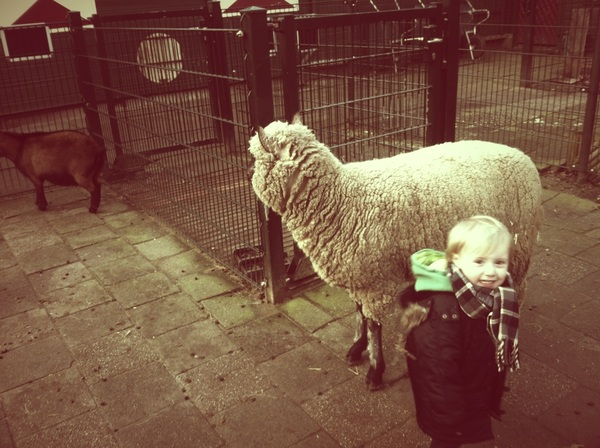 Fletcher of the day: Baaaaa