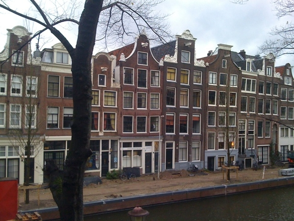 Gray but happy day: we got trees back on other side of Bloemgracht