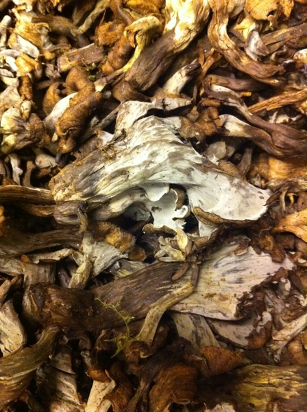 These beautiful black trumpet mushrooms just came in the back door if Topolo. I love their texture and dark flavor