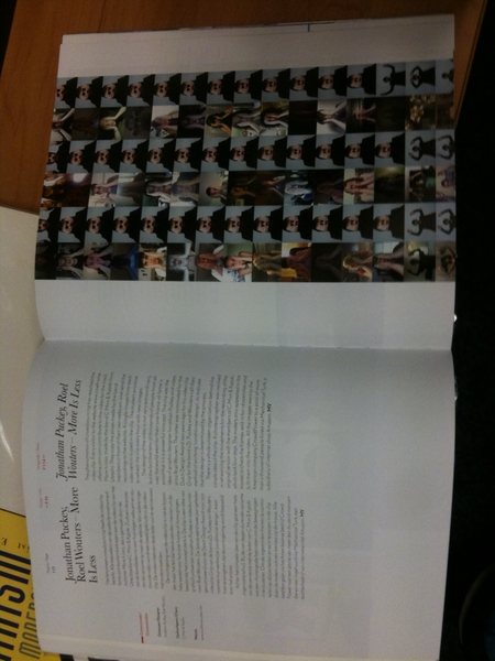 Nice! Oneframeoffame in the Dutch design book!
