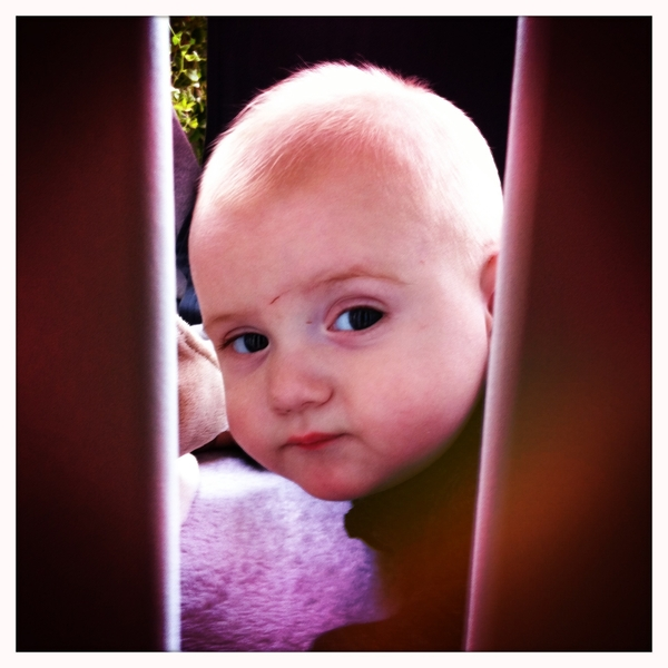 Fletcher of the day: behind bars.