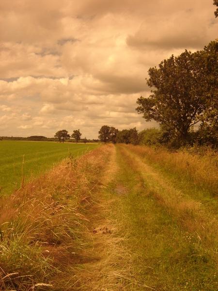 """In de """"Linde Vallei"""" met zonnebril voor de lens :-) #buienradar"""