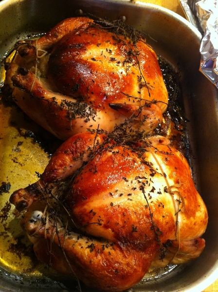 Went to friends house last night for the most DELICIOUS brined roasted chicken dinner (fresh herbs, garlic).
