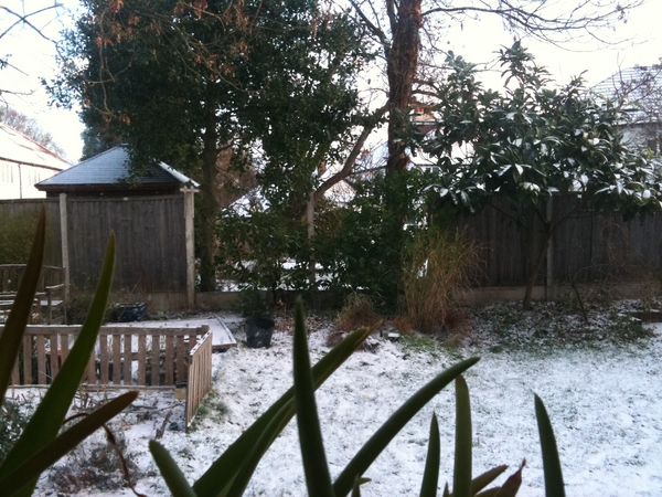 The estate under snow