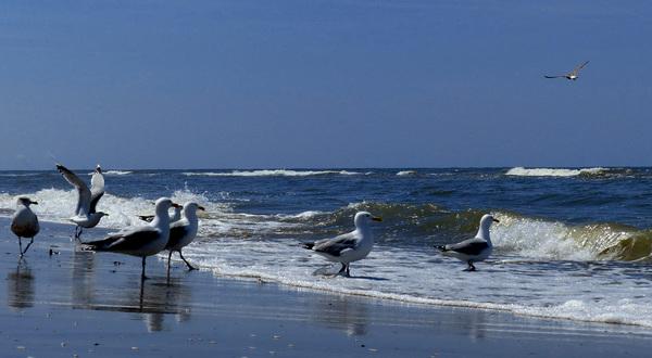zonovergoten strand #buienradar