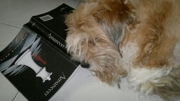 Athina se durmio leyendo? Eres team Jacob o team Edward?