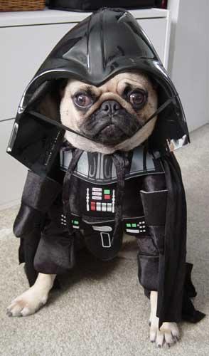 nee, Moby team... het is niet Darth Vaderdag cc @bpelgrom, @dryxe, @phortuin