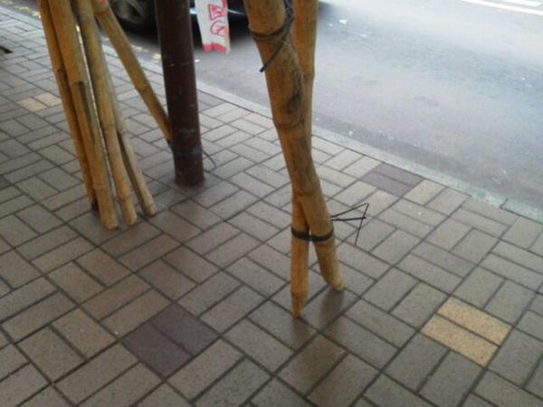 香港名物、竹やりで組んだ足場の根元。怖いわー(笑)