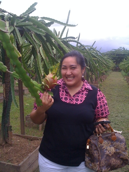 With @kayewee at a Dragon Fruit plantation in Zamboanga City. ☼