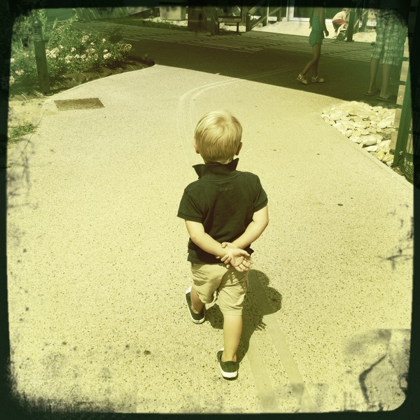 Fletcher of the day: new walk ( like Uncle Rutger)