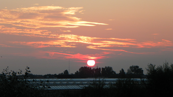 De zon komt op boven de kassen in het westland #buienradar