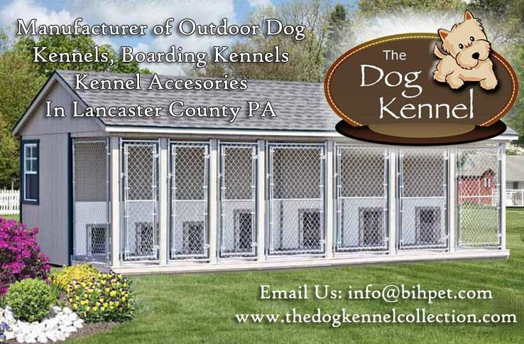 Dog Kennels York County Pa
