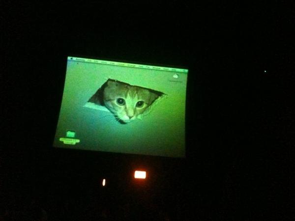 OHAI @Ceiling_Cat Heer is ur pikchur from W00tstock Chicago last year!