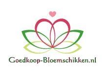 Shop www.pompoenzaden-decoshop.nl of www.goedkoop-bloemschikken.nl