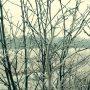 #ijzel #winter voor het verkeer geen pretje, maar het levert wel hele mooie plaatjes op. #buienradar