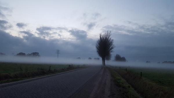 Mist in Ermelo #buienradar