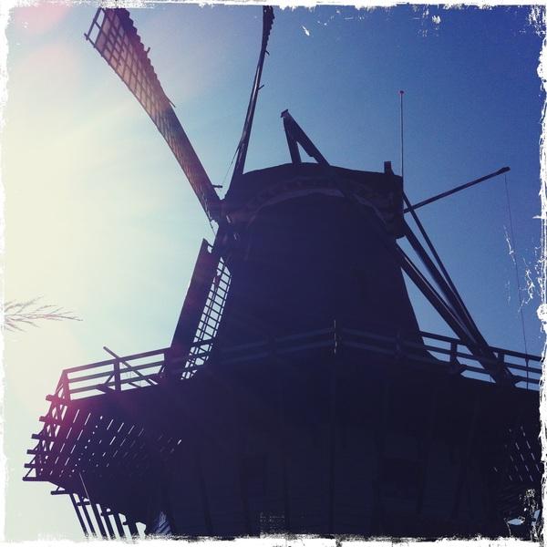 Windmill in Koog aan de Zaan