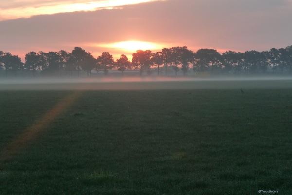 zon op een zondag morgen #buienradar