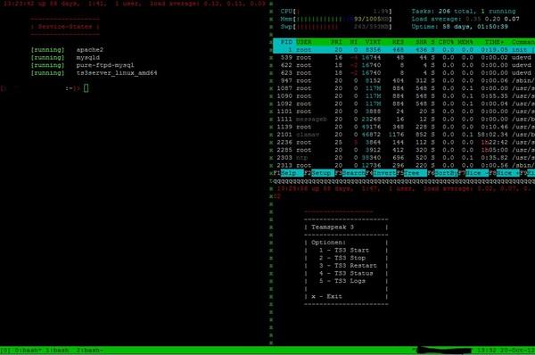 Tmux on Debian