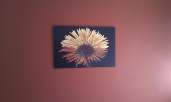 Mijn lieve vriendin van deze foto boven mijn bed exposeert bij www.kunstachterdijken #trots www.ddfoto.nl