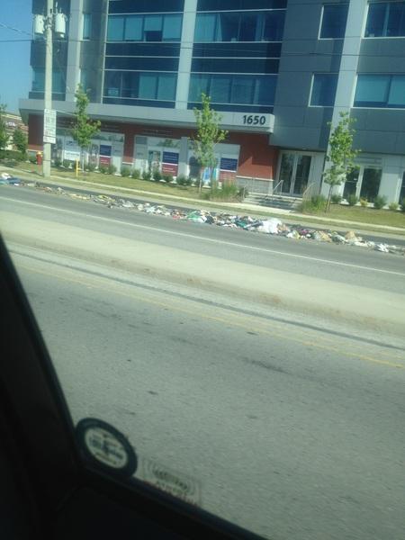 Garbage dump on Elgin Mills