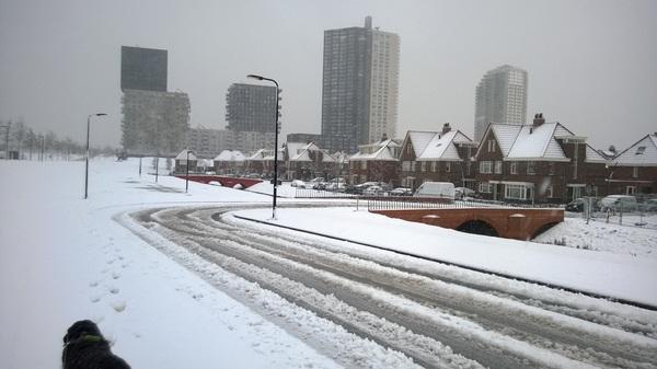 Sneeuw in Spijkenisse #buienradar