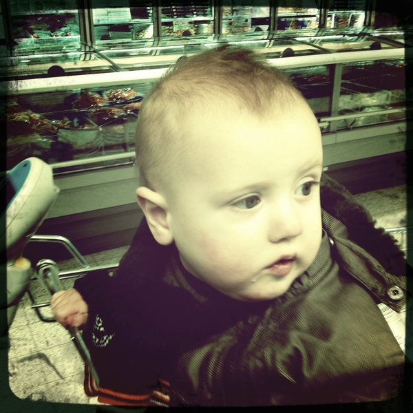 Fletcher of the day: grocery shopping.