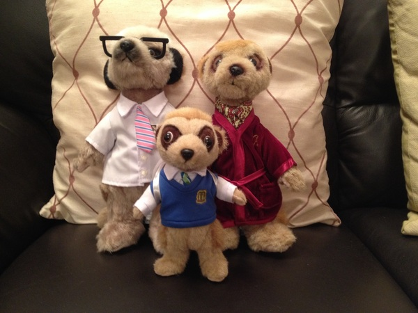 Bogdan arrived safely from #Meerkovo today. Alexander & Sergei have been helping him settle in.