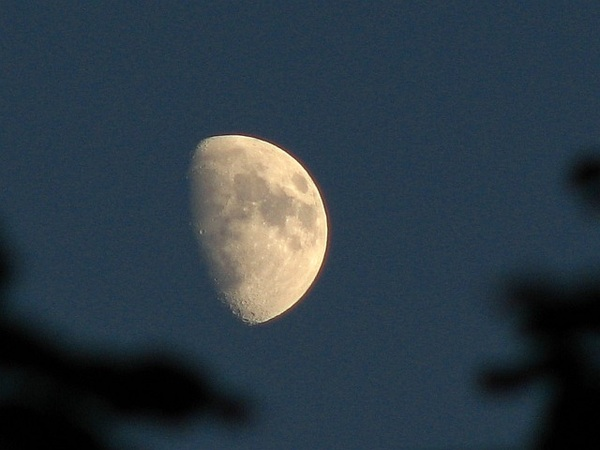 Pale golden luna 28/6/12  @newburyastro @badas_tweets  #moonwatch #wonders