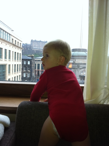 Fletcher of the day:  checking out the view