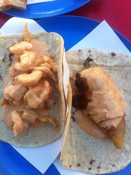 Ensenada hi-lites: tacos of shrimp in chipotle cream (w chicharrón de pescado)&of güero chile stuffd w smkd marlin