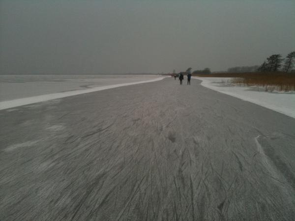 Mooi ijs vanochtend bij de #Tjeukemeertocht