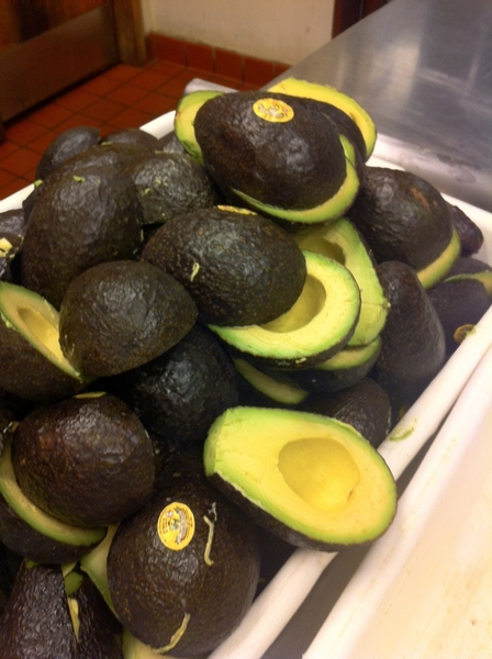 Making guacamole for evening service with the most perfect Michoacan avocados.