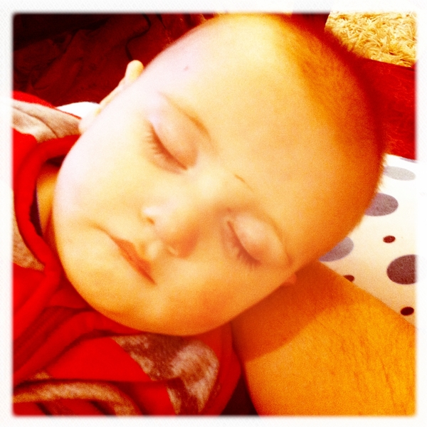 Fletcher of the day: asleep, for now.