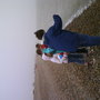 is in Aldeburgh.