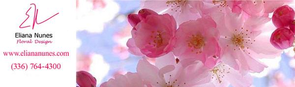 Eliana Nunes - Floral Design in Winston Salem, NC