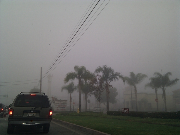 Man...this is all fogged up!