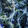 ♬ 'ninelie (TV size)' - Aimer ♪ #nowplaying