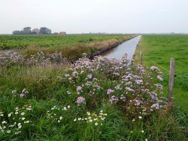 Herfst in de polder #lovezeeland