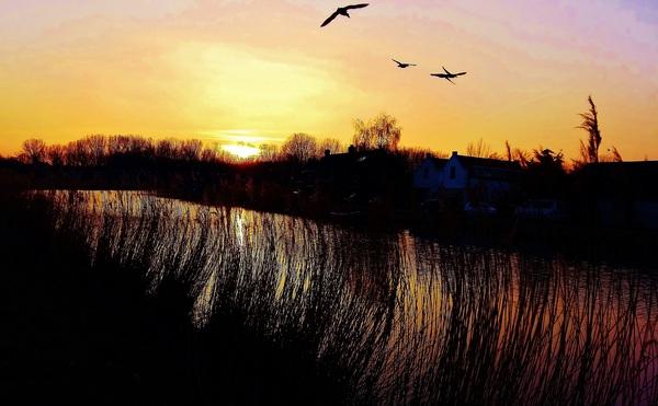 Sfeervol bij zonsondergang aan de Rotte. #buienradar