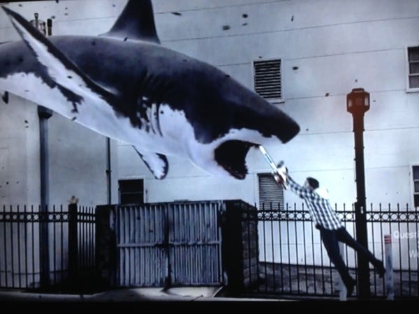 This could really happen. Please take the necessary precautions. #sharknado