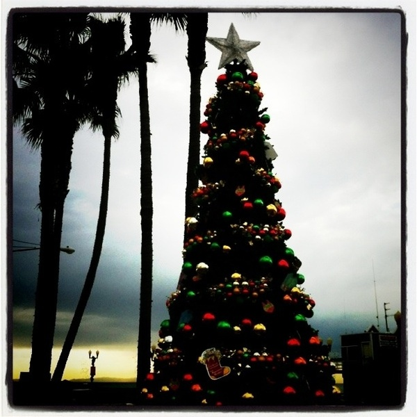 Hanging out in Seal Beach on a cloudy day doing the Christmas thing. Beach Christmas tree ☛