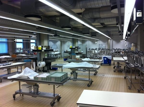 #snijzaal #anatomie UMC. Ze komen om in het aanbod van lichamen en hebben nu een lijkenstop. Sfeervol verhaal #EditieNL
