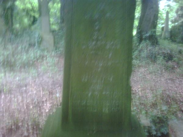 Patrick Ancestry, Glasgow, Scotland