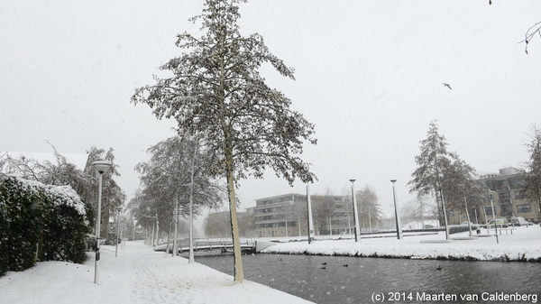 8cm #sneeuw in #hintham / #rosmalen / @shertogenbosch . Inmiddels valt er #natte sneeuw.